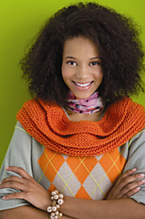 Cowl_13d_small2