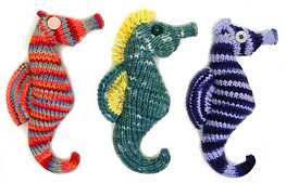Seahorse28_small_best_fit