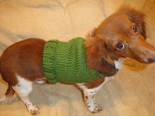 Free Amigurumi Dachshund Pattern : Ravelry dachshund anxiety sweater pattern by chiwaluv amigurumi