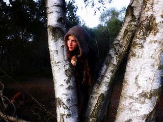 _woodland_knits_047_small2