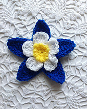 Columbine-flower-on-lace-2_medium_small_best_fit