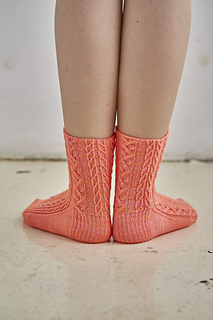 Lo_res_coopey_2395_for_sock_small2
