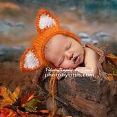 Prof_foto_trish_barthorpe_fox_bonnet_small_best_fit