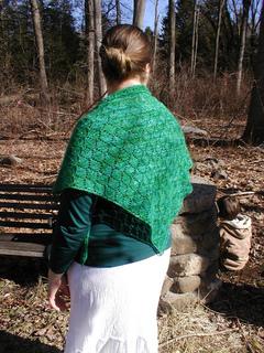 Green_shawl_3_small2