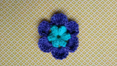 Blossom_medium