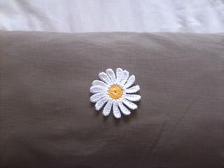 Daisy_in_cotton2_small2