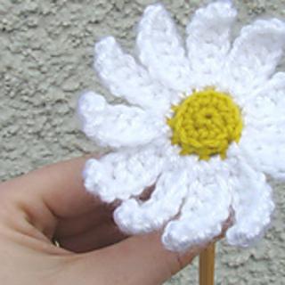 Daisy_3_small2