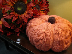 Great_cabled_pumpkin_003_small