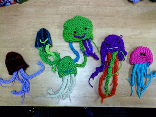 Classjellyfishes_small2