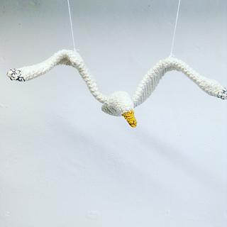 Gull11_small2