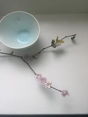 Bloss4_small