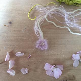 Bloss10_small2