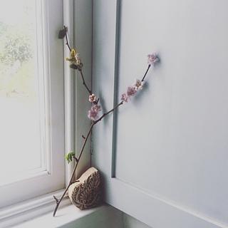Bloss3_small2