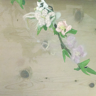Bloss9_small2