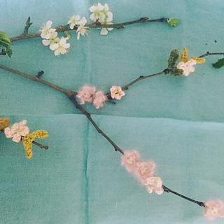 Bloss12_small2