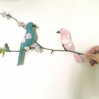 Bird3_small2