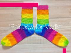 Rainbow4rav_small