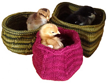 Chickens_sm_small_best_fit