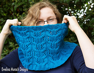 Blue_cowl_main_pic_c_small2