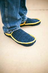 Blue_slipper2_small_best_fit
