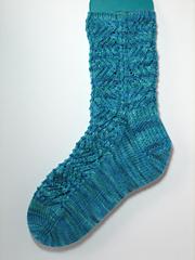 Bodega_bay_sock_small