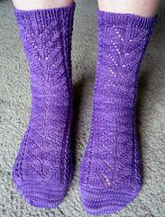 2_purple_socks_small