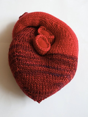 Heart_view_1_small