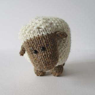 Moss_the_sheep_img_0603_small2