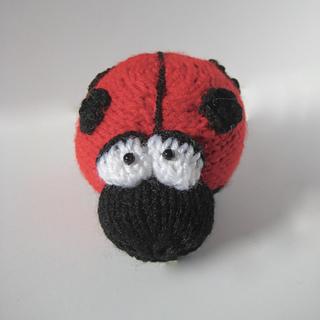 Spots_the_ladybird_17908705318_164490b5ce_o__1__small2
