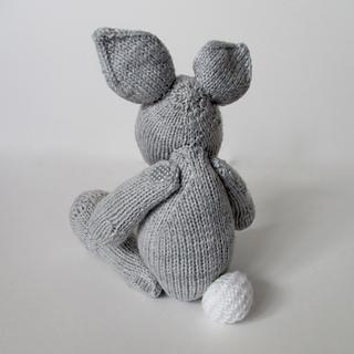 Henry_rabbit_img_8608_small2