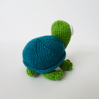 Spencer_the_tortoise_img_9389_small2