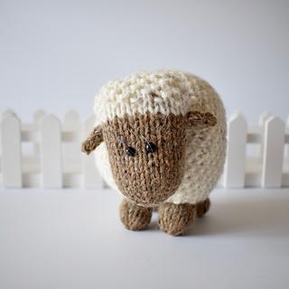 Moss_the_sheep_dsc_0009__2__small2