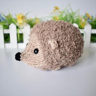 Snuggly_hedgehog_dsc_0010__1__small2