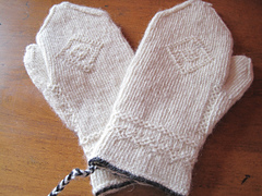 Twinned_mittens_1_small