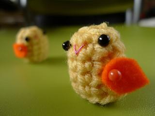 Tot_chicks_small2