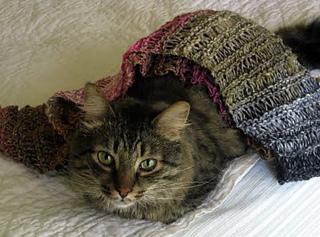 Drop_stitch_scarf2_charlie_small2
