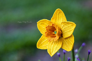 Ravelry daffodil narcissus pattern by happy patty crochet happy patty crochet ccuart Gallery
