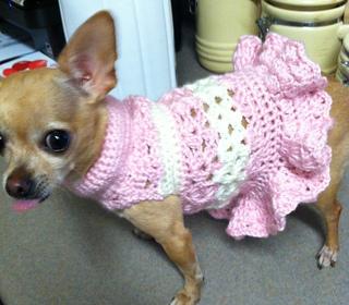Ravelry Littlest Bo Peep Crochet Dog Sweater Pattern By Cobos Closet
