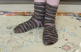 Shiresocks_small_best_fit