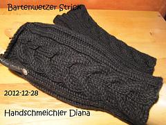 2012-12-28_diana_small