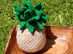 Pineapple_1_small