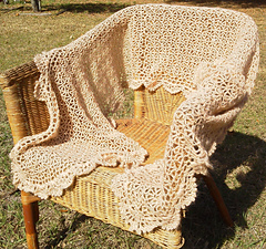My_belle_shawl_2_small