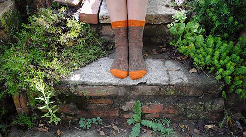 Autumnal9_medium
