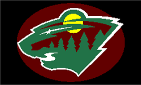 Minnesota_wild_charted_throw_small_best_fit