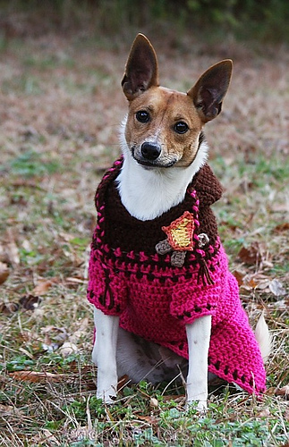 Ravelry Custom Fit Crochet Dog Sweaters Patterns