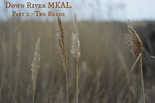 Part_2_-_the_reeds_small2