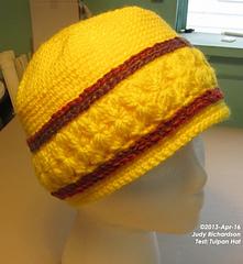 Test-tulpan-hat-50_small