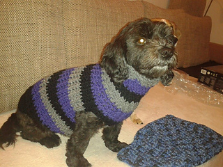 Ravelry Hundepullover Gehäkelt Dog Sweater Pattern By Julie Marie