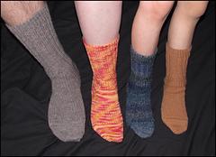 Family_of_socks_small