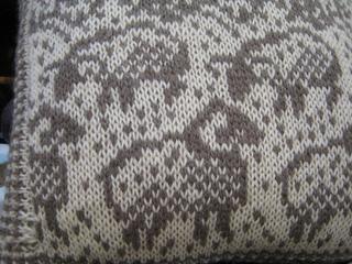 Sheep_closeup_small2